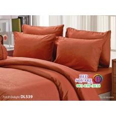 ผ้าปูที่นอนผ้านวม ทิวลิป ดีไลท์ DL539 ชุดเครื่องนอน Tulip Delight