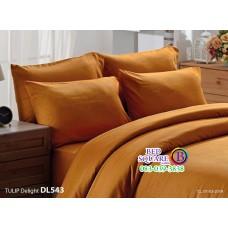 ผ้าปูที่นอนผ้านวม ทิวลิป ดีไลท์ DL543 ชุดเครื่องนอน Tulip Delight